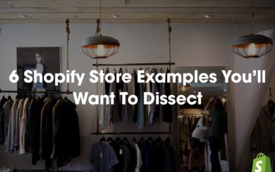 6 Shopify Store Examples You'll Want To Dissect