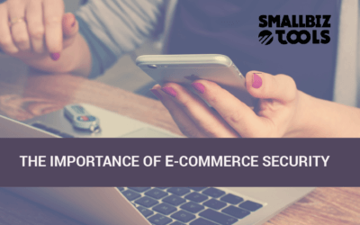 The Importance of E-Commerce Security